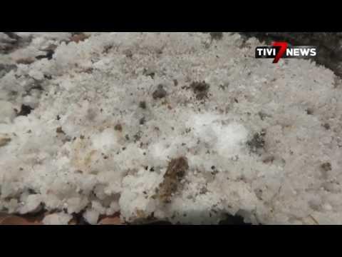 NGANJUK - WOW!!! Fenomena Sungai Tengah Hutan Penghasil Garam
