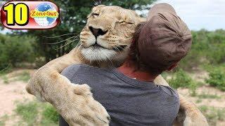 10  มิตรภาพสุดมหัศจรรย์ระหว่างมนุษย์กับสัตว์ที่จะทำให้คุณต้องทึ่งและซาบซึ้งใจเกินจะบรรยาย