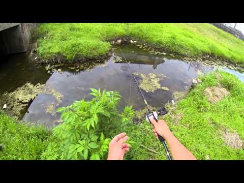 Spring Bass fishing (Spawning Bass) Bayou Bass 720p HD