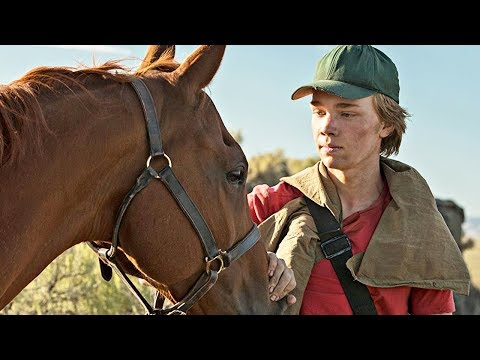 LA ROUTE SAUVAGE Bande Annonce (2018) Film cheval
