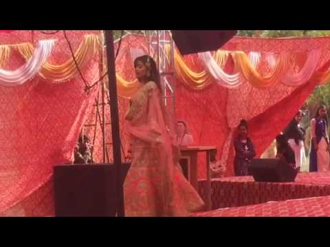 Bhagini Nivedita College video cover2