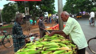 Sweet corn seller, Bhubaneswar