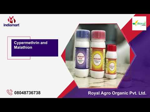 Zinc Phosphide Products and Household Insecticide