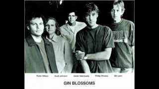 Gin Blossoms ''Soul Deep''