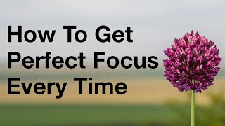 How To Get Perfect Focus On Your Camera Every Time