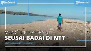 Viral Video Muncul Pulau Baru Pasca-badai Seroja di NTT Rencananya Dinamai Pulau Paskah