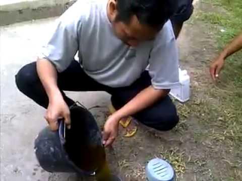 Video Solusi WC yang penuh atau mampet
