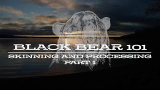 Black Bear 101   Skinning and Processing   Part 1