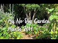 My No-Dig Garden // Autumn // March 2019 // New Zealand