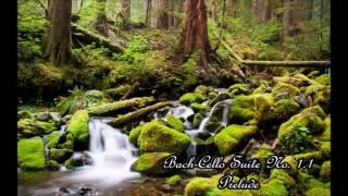1 Hour Bach-Cello Suite No. 1.1 Prelude