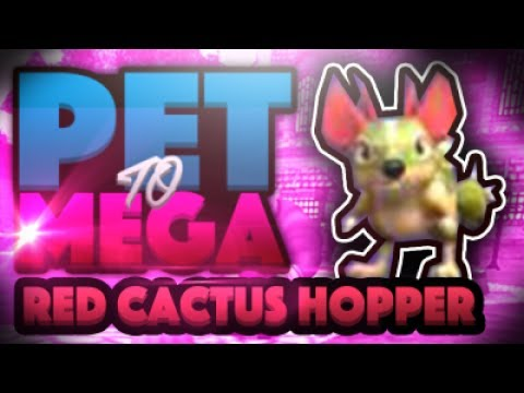 Wizard101 Dapper Corgi Pet To Mega NEW Energy Talent