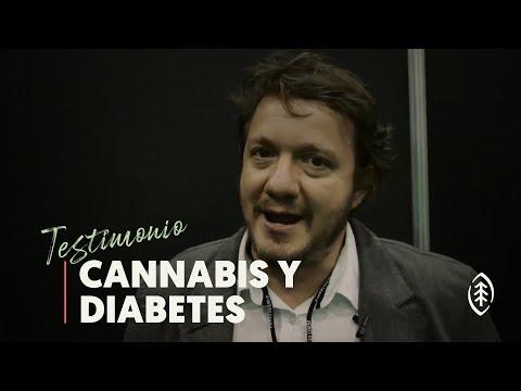 La diabetes mellitus que se produce con el páncreas