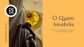 """Nuevo video: """"O Quam Amabilis"""""""