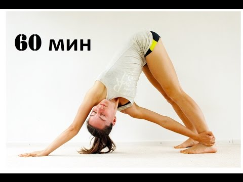Виньяса йога для спины | Уровень 1-2 | Йога chilelavida