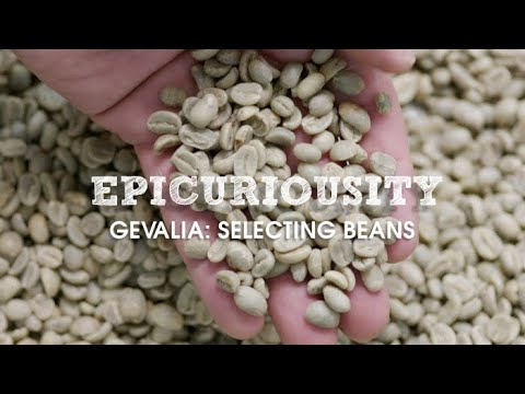Epicuriousity: Selecting Gevalia's Premium Coffee Beans - Artisanal Food Masters – Epicurious