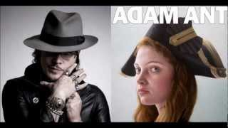 Adam Ant - Marrying the Gunner's Daughter