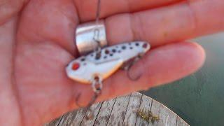 Цикада для ловли окуня на спиннинг