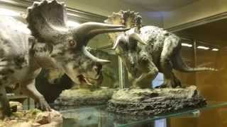 #0001/1000 Triceratops Sideshow Dinosauria (shown with Shane Foulkes model)