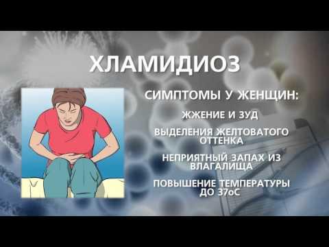 Конский возбудитель оренбург