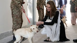 video: Duchess of Cambridge speaks of mid-air Pakistan 'adventure' as she thanks RAF for keeping them safe on 'pretty bumpy' plane ride