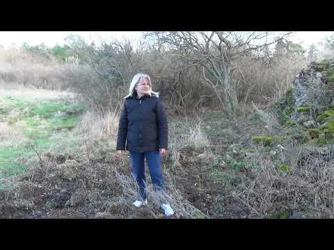Keresés egyedülálló nő 50