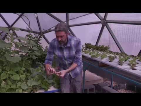 , title : 'Greenhouse Aquaponics