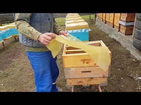 Ошибки начинающих пчеловодов. Часть 2.