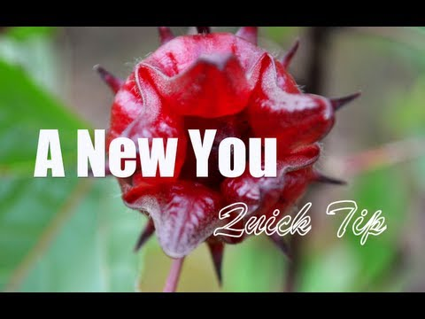 "Video ""A New You"" Quick Tip - The Health Benefits of Sorrel Drink - Row Lewis"