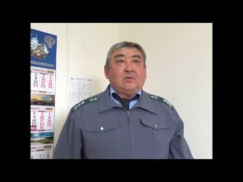 О контроле Россельхознадзора за реализацией посадочного материала в Республики Калмыкия