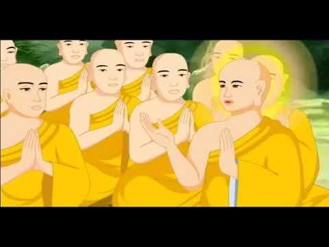 Con Chó Cái, Phật Thuyết Nhân Quả , Phim Hoạt hình Phật Giáo, Pháp Âm HD