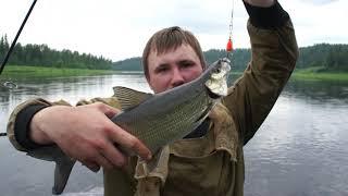 Зимние рыбалка на енисее