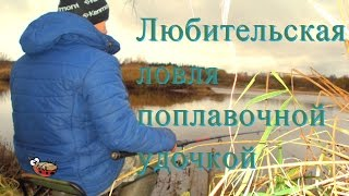 Любительская рыбалку на поплавочную удочку про