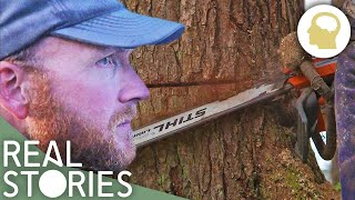 Lumberjack Lives (Man Vs. Nature Documentary) | Real Stories