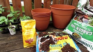 How to Start Your First Container Tomato, Pepper and Herb Garden: All the Steps to Get Started!