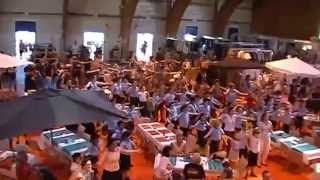 preview picture of video 'Flashmob pendant les Greniers de St. Pierre - Gex, 28/09/14 - 15h'