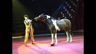 Смотреть онлайн Цирк: Выступление ковбоя с лошадью