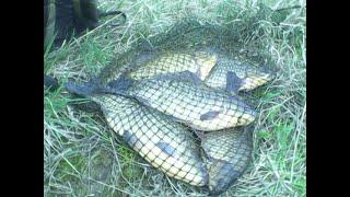Самодельные рыболовные прикормки