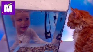 Акваферма выращиваем салат в аквариуме