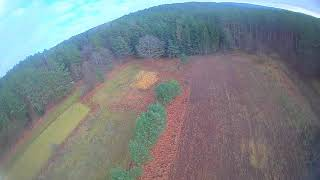 Black - Wonderful Life - FPV flying in the fields by the forest