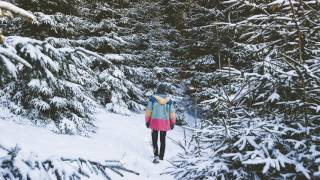 filous - Let It Snow (Visualizer)