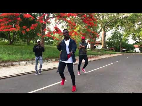 All Afro Dance Moves(ShakuShaku,GwaraGwara,Azonto,Alkayida,Gweta,CoupeDecale by( DANCE BEASTS)