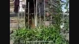 preview picture of video 'Caso de Vivienda (1ra Parte) - Bayamo, Cuba'