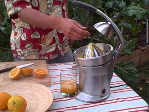 Breville Die Cast Stainless Steel Motorized Citrus Press Juicer 800CPXL