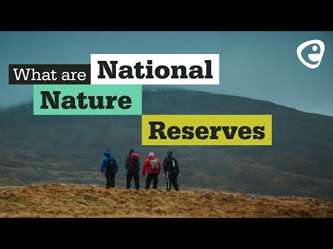 What are National Nature Reserves?