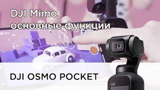 Osmo Pocket и приложение DJI Mimo