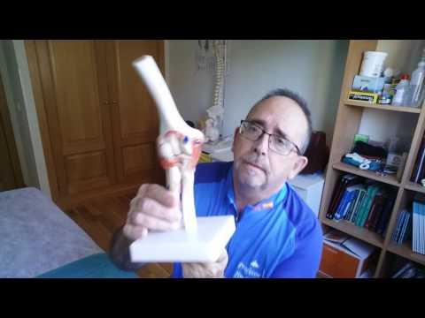 Dolor en las articulaciones de la espalda y de las piernas