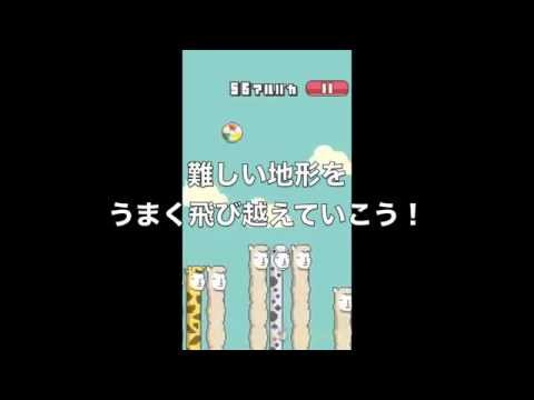 Video of Alpaca Ball