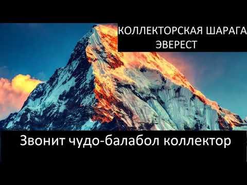 Эверест чудо работники и солидарная ответственность