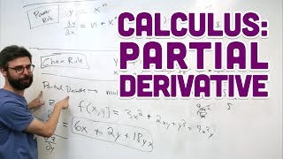 3.5c: Calculus: Partial Derivative - Intelligence and Learning