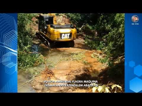 Policia Ambiental flagra Máquina desmatando em Abatia-PR